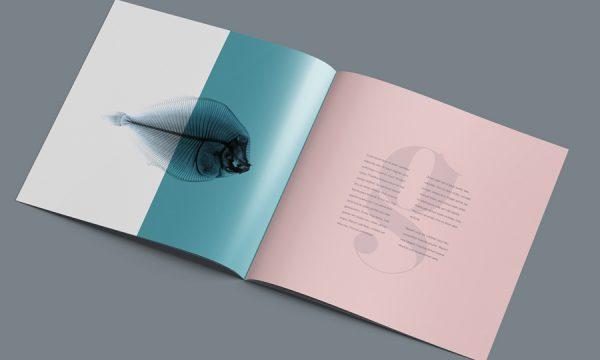 square-brochure